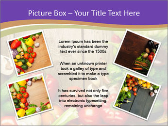0000086033 PowerPoint Template - Slide 24