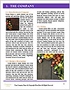 0000086033 Word Template - Page 3