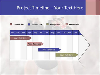 0000086034 PowerPoint Template - Slide 25