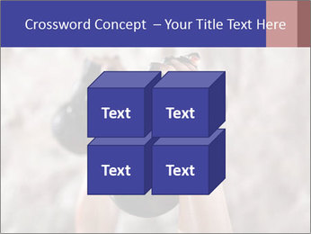 0000086034 PowerPoint Template - Slide 39