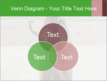 0000086038 PowerPoint Template - Slide 33
