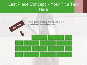 0000086038 PowerPoint Template - Slide 46