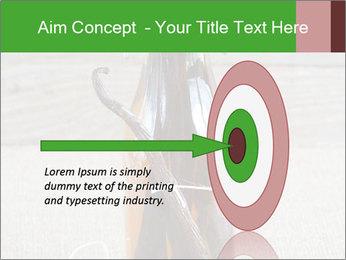 0000086038 PowerPoint Templates - Slide 83