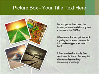0000086039 PowerPoint Templates - Slide 23