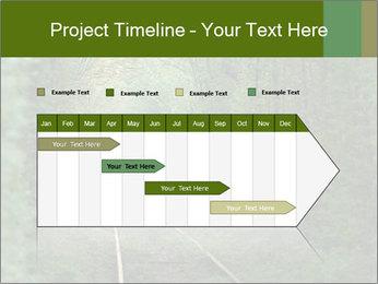 0000086039 PowerPoint Templates - Slide 25