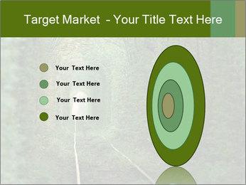 0000086039 PowerPoint Templates - Slide 84