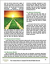 0000086039 Word Templates - Page 4