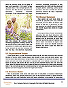 0000086042 Word Templates - Page 4