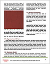 0000086058 Word Template - Page 4