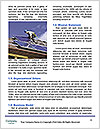 0000086068 Word Templates - Page 4