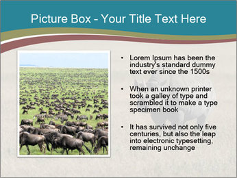 Black Rhino in Ngorongoro Crater PowerPoint Templates - Slide 13