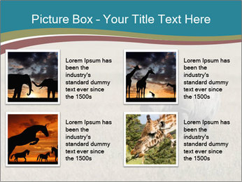 Black Rhino in Ngorongoro Crater PowerPoint Templates - Slide 14