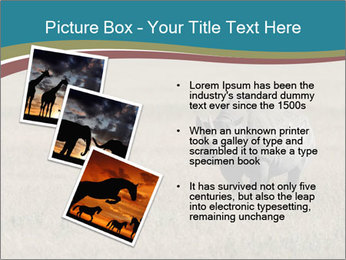 Black Rhino in Ngorongoro Crater PowerPoint Templates - Slide 17