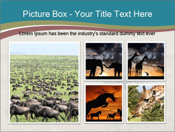 Black Rhino in Ngorongoro Crater PowerPoint Templates - Slide 19