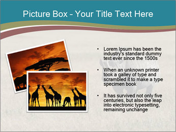 Black Rhino in Ngorongoro Crater PowerPoint Templates - Slide 20