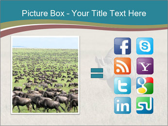 Black Rhino in Ngorongoro Crater PowerPoint Templates - Slide 21