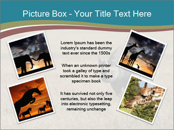 Black Rhino in Ngorongoro Crater PowerPoint Templates - Slide 24