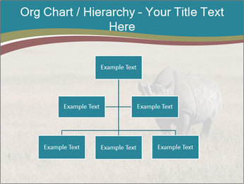 Black Rhino in Ngorongoro Crater PowerPoint Templates - Slide 66
