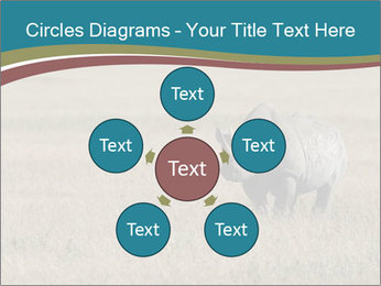 Black Rhino in Ngorongoro Crater PowerPoint Templates - Slide 78