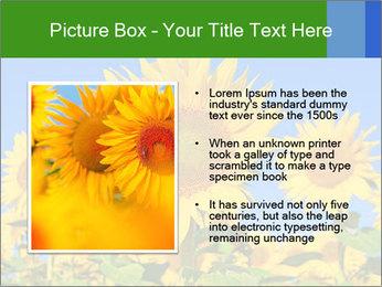 0000086077 PowerPoint Templates - Slide 13