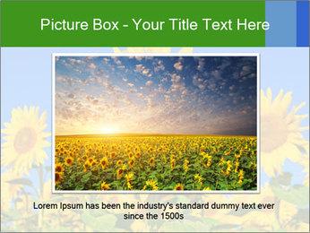0000086077 PowerPoint Template - Slide 15