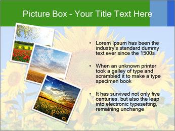 0000086077 PowerPoint Templates - Slide 17