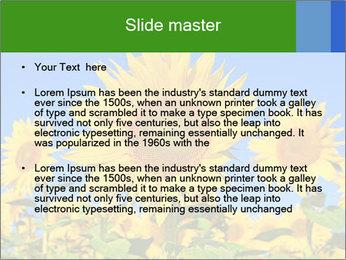 0000086077 PowerPoint Template - Slide 2