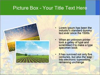 0000086077 PowerPoint Templates - Slide 20