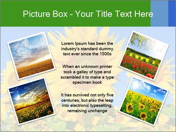 0000086077 PowerPoint Template - Slide 24