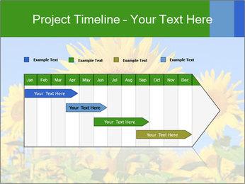 0000086077 PowerPoint Template - Slide 25