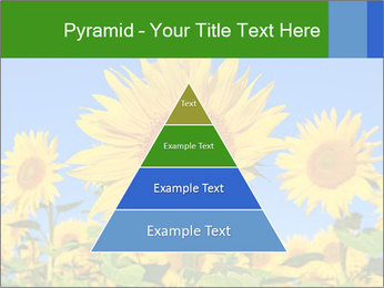 0000086077 PowerPoint Template - Slide 30