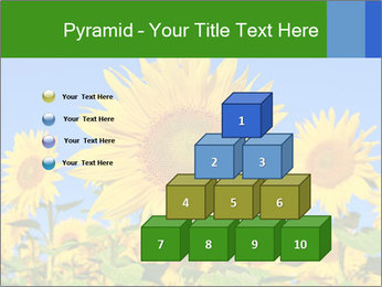 0000086077 PowerPoint Template - Slide 31