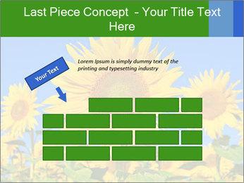 0000086077 PowerPoint Template - Slide 46
