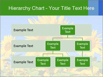 0000086077 PowerPoint Template - Slide 67