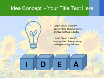 0000086077 PowerPoint Template - Slide 80