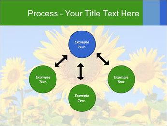 0000086077 PowerPoint Template - Slide 91