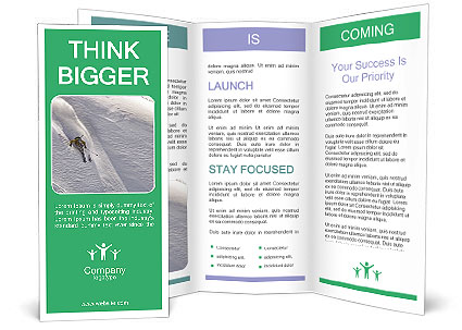 0000086084 Brochure Template