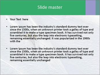 0000086084 PowerPoint Templates - Slide 2
