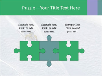 0000086084 PowerPoint Templates - Slide 42