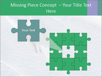 0000086084 PowerPoint Templates - Slide 45