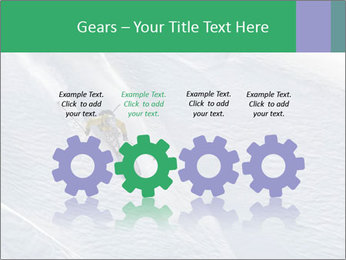 0000086084 PowerPoint Template - Slide 48