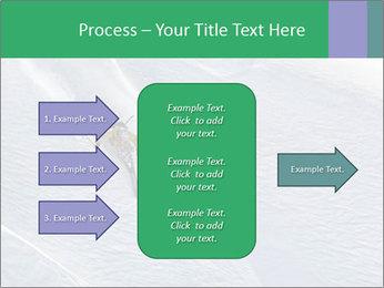 0000086084 PowerPoint Templates - Slide 85