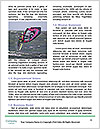 0000086084 Word Template - Page 4