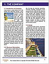 0000086087 Word Template - Page 3