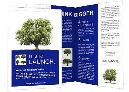 0000086103 Brochure Template