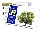 0000086103 Postcard Templates