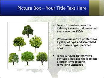 0000086103 PowerPoint Template - Slide 13
