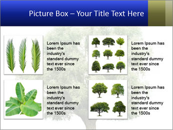 0000086103 PowerPoint Template - Slide 14