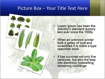 0000086103 PowerPoint Template - Slide 17