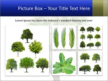 0000086103 PowerPoint Template - Slide 19